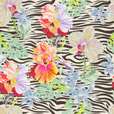 Tropical flowers on zebra Royalty Free Stock Images