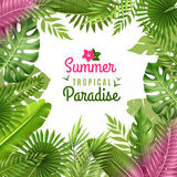 Tropical Foliage Decorative Background Frame  Royalty Free Stock Photography