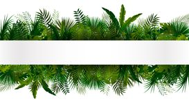 Tropical foliage. Floral design background Royalty Free Stock Image