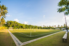 Tropical footbal field surrounded with palm trees. Corner of soccer / football field in rural tropical landscape Royalty Free Stock Photography