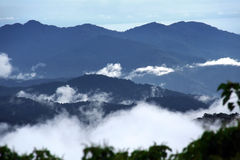 Tropical forest. View of tropical south east asian rainforest (earth's lungs) among the clouds and distanced mountains Stock Photos