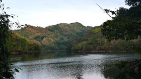 Tropical Forest around Lake Balanan 03 stock footage