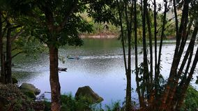 Tropical Forest around Lake Balanan 01 stock footage