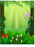 Tropical forest background Royalty Free Stock Photo
