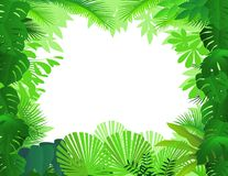 Tropical forest background. Illustration of tropical forest background Royalty Free Stock Photos