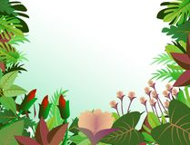 Tropical forest background Royalty Free Stock Photos