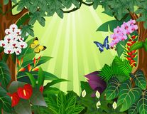 Tropical forest background Royalty Free Stock Photography