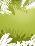 Tropical forest background Stock Photos