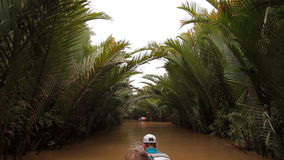Tropical forest boat trip on Mekong Delta Vietnam stock video footage