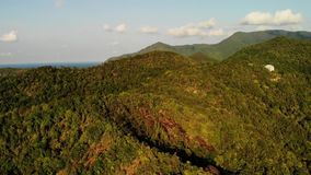 Tropical forest on island. Fantastic drone view of green jungle on mountain ridge of amazing tropical island. Blue sea. Exotic paradise panorama of rainforest stock video footage