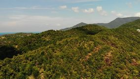 Tropical forest on island. Fantastic drone view of green jungle on mountain ridge of amazing tropical island. Blue sea. Exotic paradise panorama of rainforest stock video