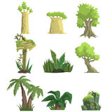 Tropical Forest Landscape Elements Royalty Free Stock Image