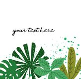 Tropical forest leaves and flowers collection. Vector illustration of hand drawn exotic leaves.  background Royalty Free Stock Image