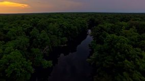 Tropical forest river at sunset on a quiet evening. Slow, relaxing flythrough of a tropical forest river at sunset on a calm, quiet evening with green trees on stock video