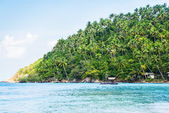 Tropical forest, sea coast and mountains Royalty Free Stock Image