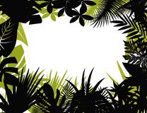 Tropical forest silhouette Stock Image
