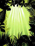 Tropical forest silhouette Royalty Free Stock Photos
