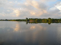 Tropical forest skyline on the Amazon river. Forest skyline on the Amazon river, mirrored in water stock photo