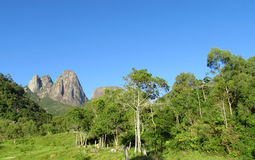 Tropical forest and smooth mountain Royalty Free Stock Image