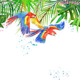 Tropical forest. Watercolor tropical forest. Parrot watercolor. Royalty Free Stock Photo