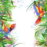 Tropical forest. Watercolor tropical forest. Parrot watercolor. Royalty Free Stock Images