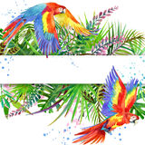 Tropical forest. Watercolor tropical forest. Parrot watercolor. Stock Images