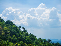 Tropical forests and cloudscape Royalty Free Stock Photography