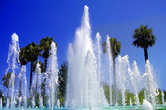Tropical fountain Royalty Free Stock Photos