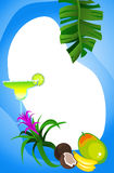 Tropical Frame Royalty Free Stock Photography