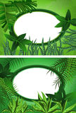 Tropical Frame. Tropical background with green plants and a frame for text Stock Photo