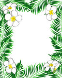 Tropical frame. Aloha style. Palm leaves and flowers Royalty Free Stock Photo