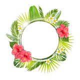 Tropical frame border. Vector royalty free illustration