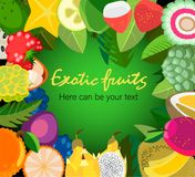 Tropical fruits frame. Tropical frame with exotic  leaves, tropical fruits, bright parrot and place for text Stock Photos