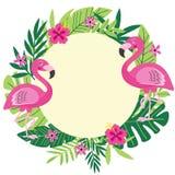 Tropical frame with flamingo Stock Photos