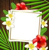 Tropical frame with flowers Stock Images