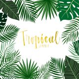Tropical frame with hand drawn leaves and hand lettering Royalty Free Stock Image