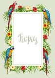Tropical frame with parrots. Royalty Free Illustration