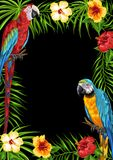 Tropical frame with parrots. Palm leaves, hibiscus flowers and exotic birds vector illustration