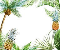 Tropical frame raster Royalty Free Stock Images