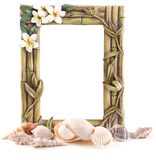 Tropical Frame and Sea shells Stock Photography
