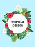 Tropical frame. Vector Postcard. Royalty Free Stock Photos