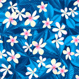 Tropical frangipani floral seamless pattern Stock Photos