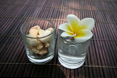 Tropical frangipani flower and stone decoration. Stock Images
