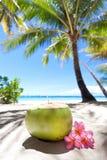 Tropical fresh cocktail on white beach Royalty Free Stock Photo