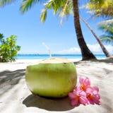 Tropical fresh cocktail on white beach Stock Photos