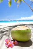 Tropical fresh cocktail on white beach Royalty Free Stock Photography