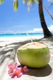Tropical fresh cocktail on white beach Royalty Free Stock Photos