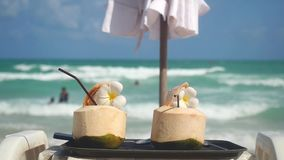 Tropical fresh coconut cocktails decorated frangipani flowers in beach cafe with turquoise sea background. slow motion. Tropical fresh coconut cocktail in beach stock footage