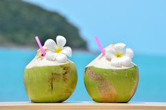 Tropical fresh coconut cocktail decorated plumeria Stock Photos
