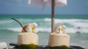 Tropical fresh coconut cocktails decorated frangipani flowers in beach cafe with turquoise sea background in slow motion. 1920x1080, hd stock footage